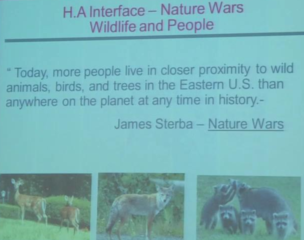 Image of a quote from James Sterba