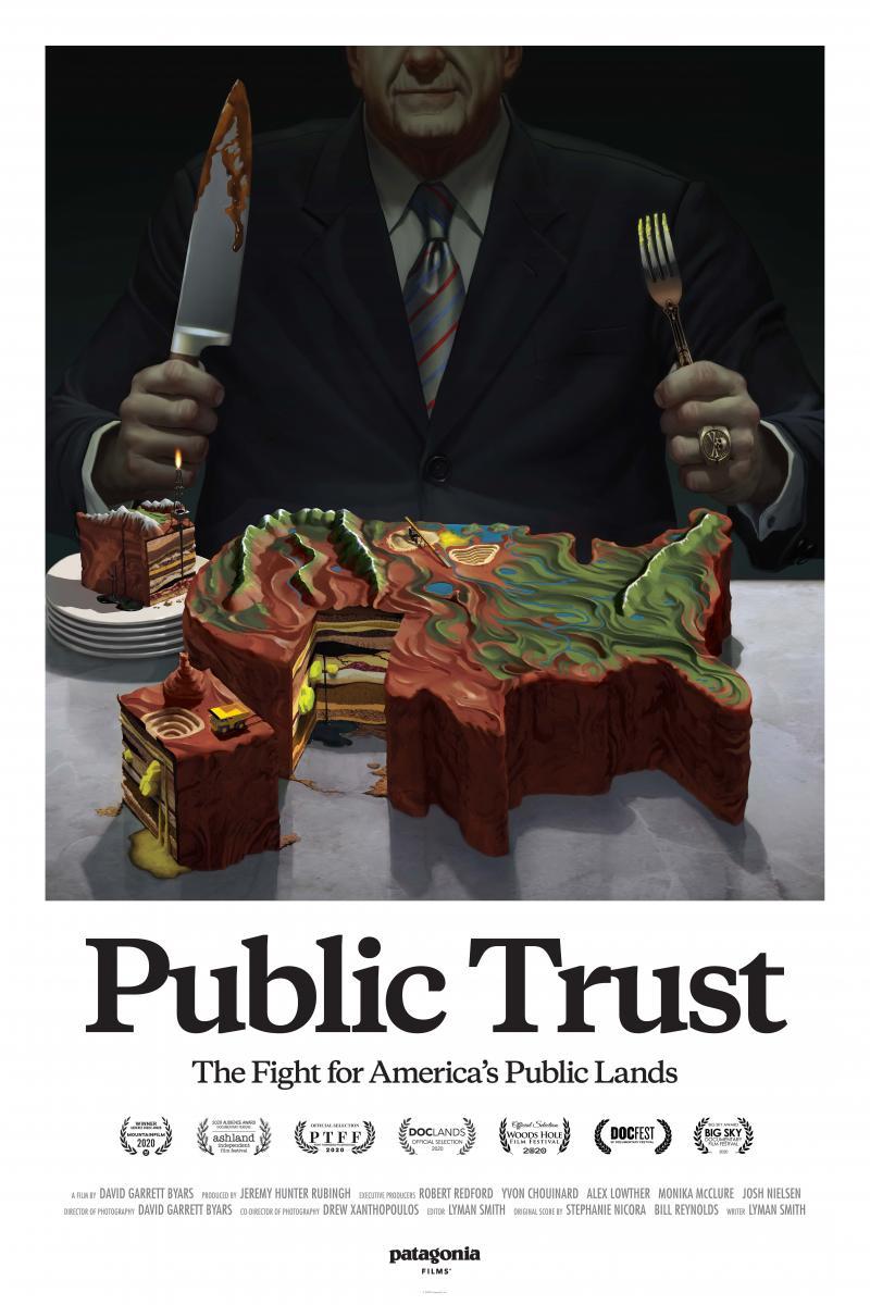 Public Trust poster